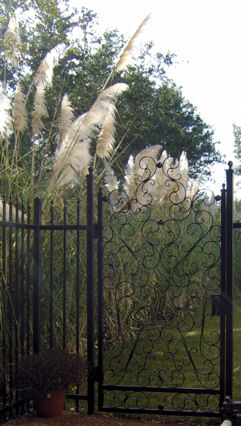 gate with fencing - weaver creative - evans weaver